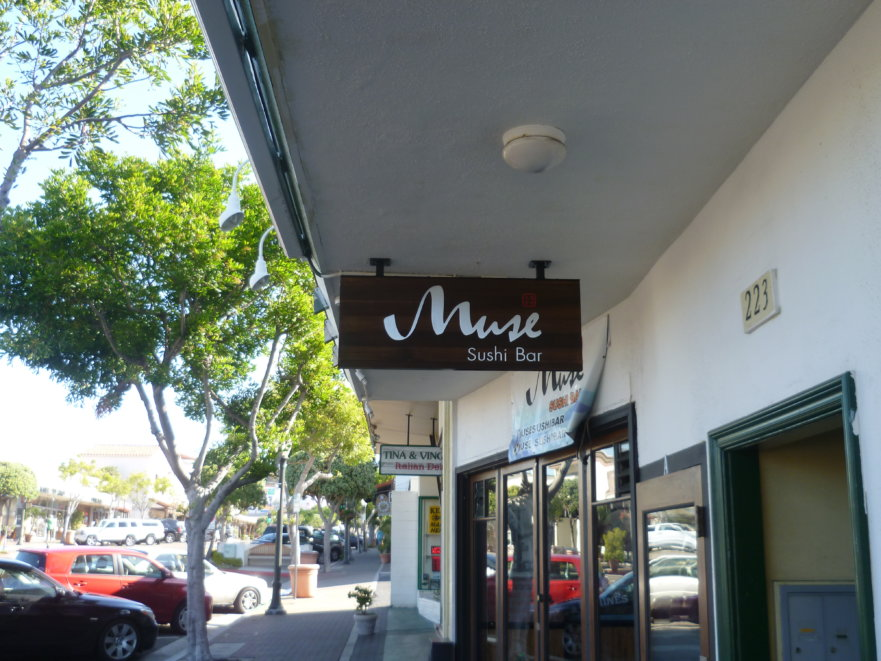 Muse Ceiling Mounted Blade Sign